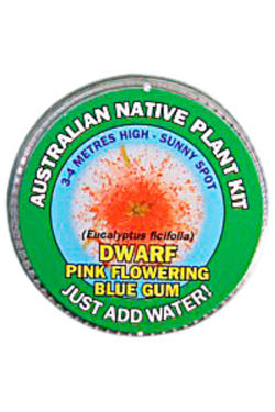 Pink Flowering Gum Seed Kit - Standard