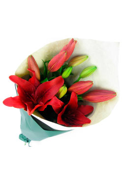 Red Lily bunch - Standard