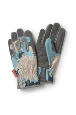 Chrysanthemum Gloves - Standard