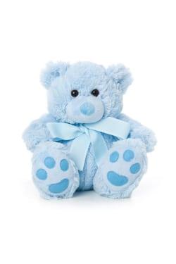 Blue Bear - Standard