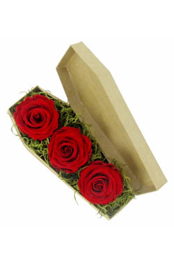 Red Neverending Roses - Standard