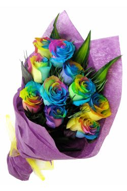 12 Rainbow Roses - 12 Roses (One Dozen)