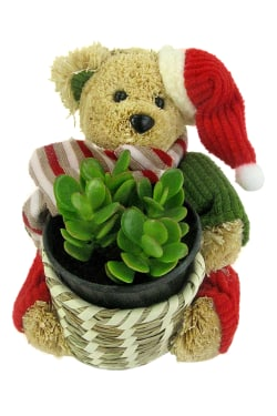 Christmas Basket - Standard