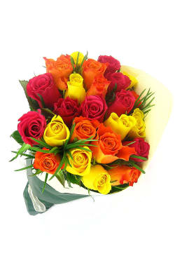 Valentine's 24 Bright Roses - Premium