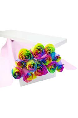 12 Elegant Rainbow Roses - 12 Roses (One Dozen)