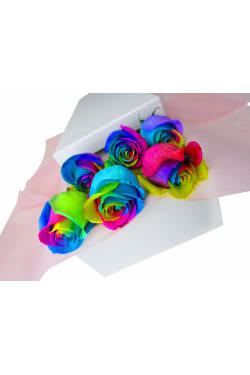 Valentine's 6 Rainbow Rose's - 6 Roses (Half Dozen)