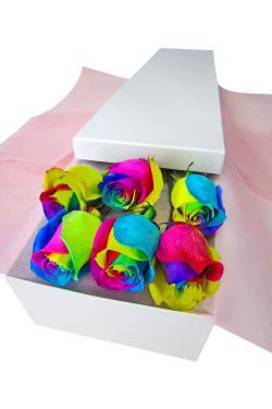 6 Elegant Rainbow Roses - 6 Roses (Half Dozen)