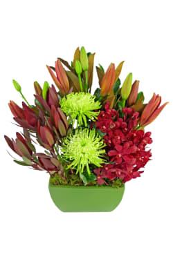 Exquisite Blooms - Standard