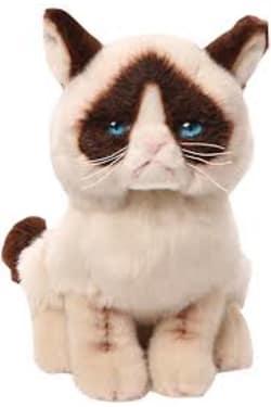 Grumpy Cat 23CM - Standard