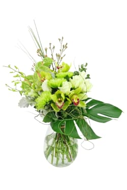Grand Gala In A Vase - Standard