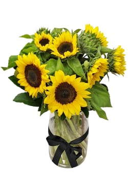 Sunflowers in a vase - Standard