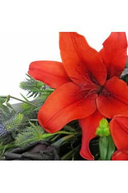 Black Swan's Bouquet - Standard