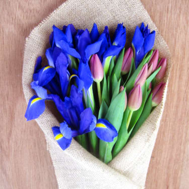 Tulip and Iris Subscription - Standard