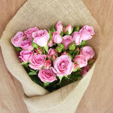Spray Rose Subscription - Standard
