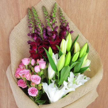 Snapdragons, Sprays and Lilies - Standard