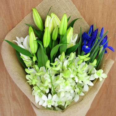 Lilies, Iris and Orchids - Standard