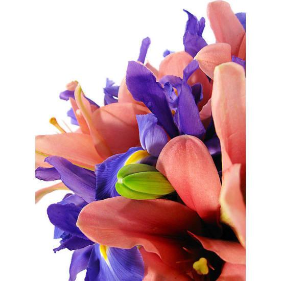 Lilies and Iris - Standard