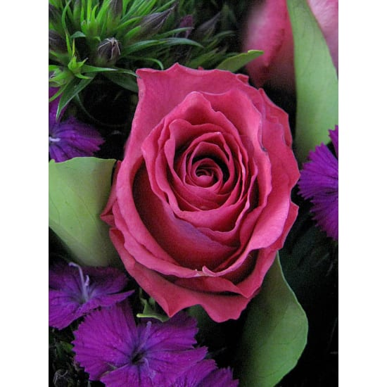 Tickled Pink Posy - Standard