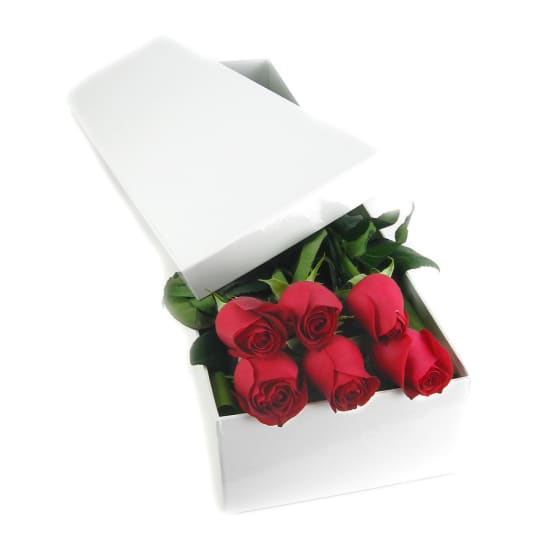 6 Elegant Roses - 6 Roses (Half Dozen)