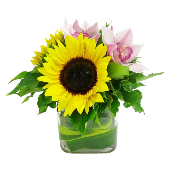 Sunflowers and Cymbidium vase - Standard