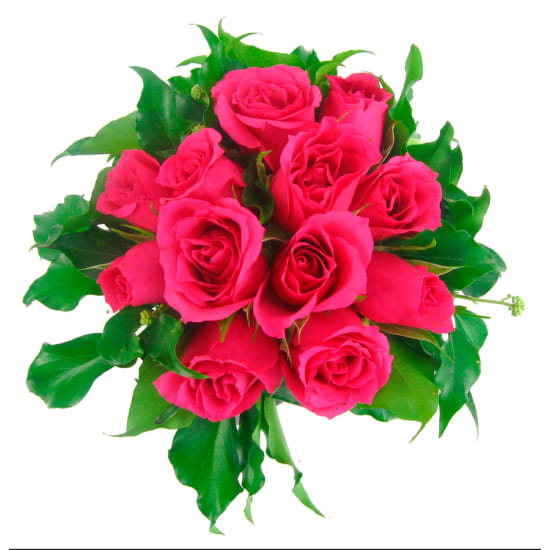 Bright Pink Rose Vase - Standard