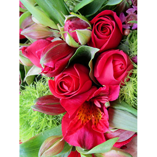 Sweet And Kind Posy - Standard