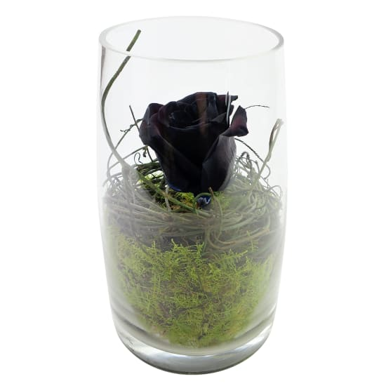 Black As Night Rose - Standard