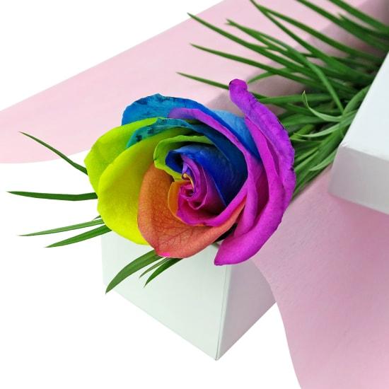 Single Rainbow Rose - Standard