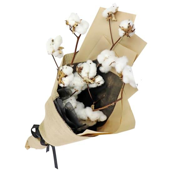 Cloud Cotton - Standard