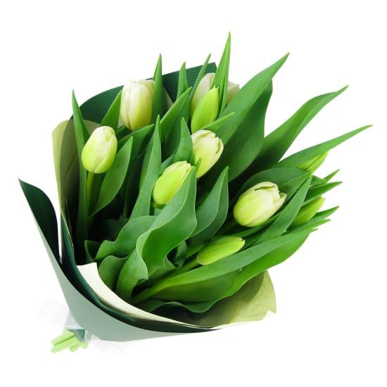 White Tulip bunch - Standard