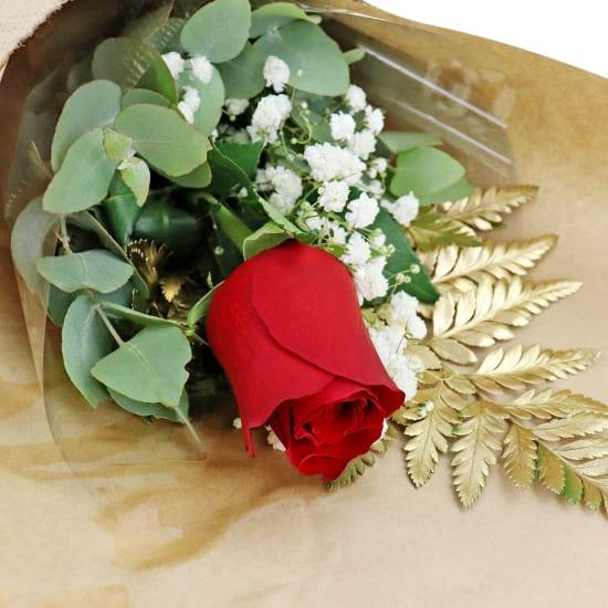 Gilded Rose - Standard
