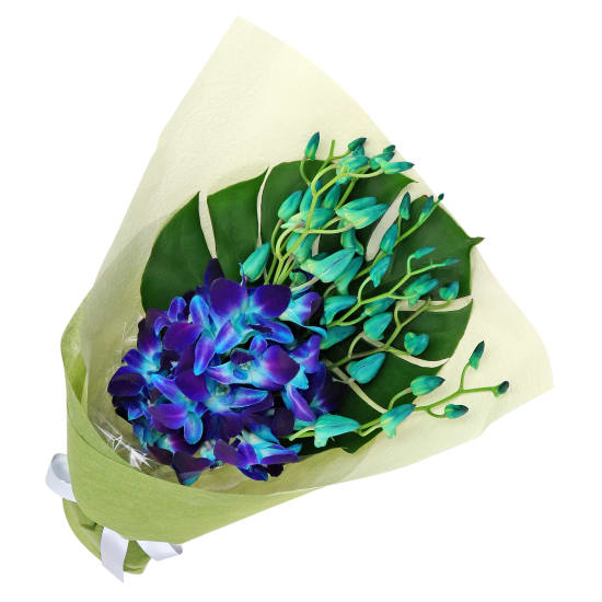 Blue Orchid Bunch - Standard