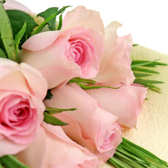 Soft Pink Rose Bunch - 6 Roses (Half Dozen)
