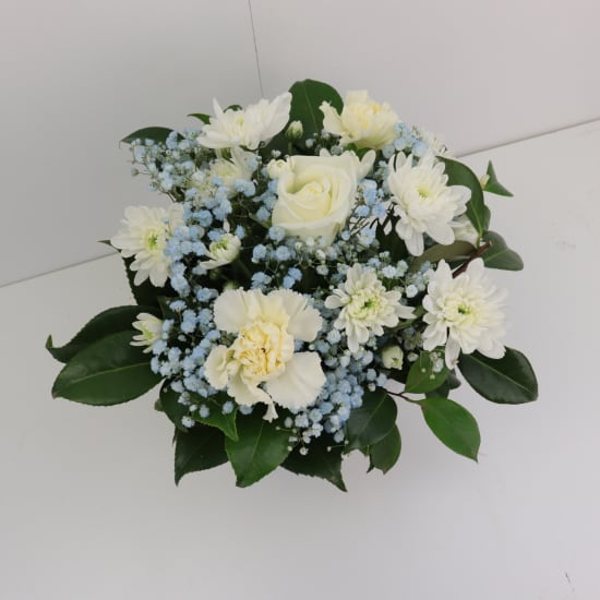 Hello Baby - Blue and White - Standard