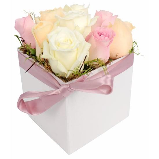 Little Rose Box - Standard