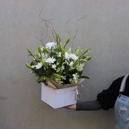 Botanique - White - Standard
