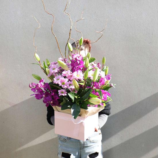 Botanique - Pinks - Standard