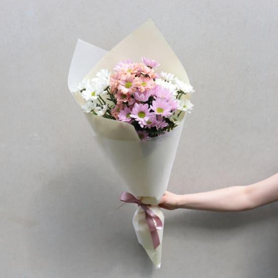 Chrysanthemums - Mixed Pastels - Standard
