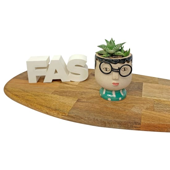 Mrs Succulent Planter - Standard