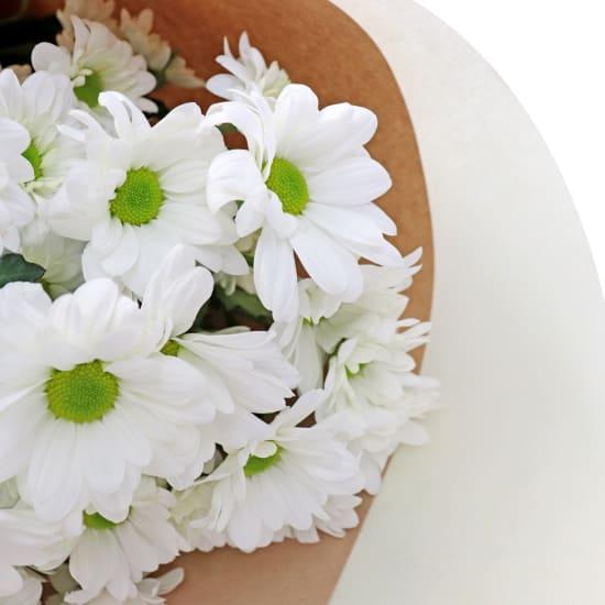Chrysanthemums - White - Standard