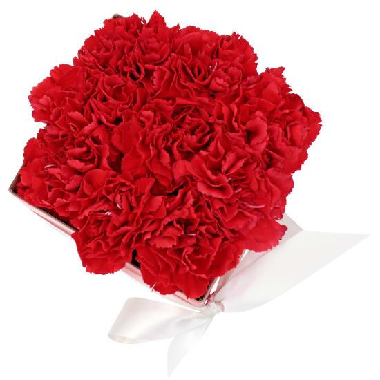 Little Flower Box - Red - Standard
