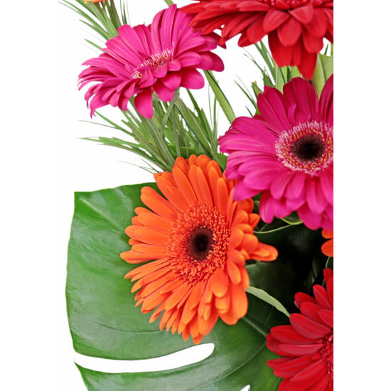 Contemporary Gerbera Vase - Standard