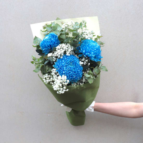 Darling Disbuds - Blue - Standard