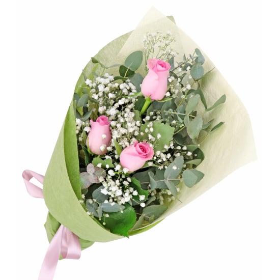 Rambling Soft Pink Roses - Standard