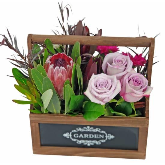 Cashmere Garden - Standard