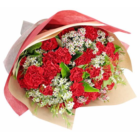 Romantic Carnation Bouquet - Standard
