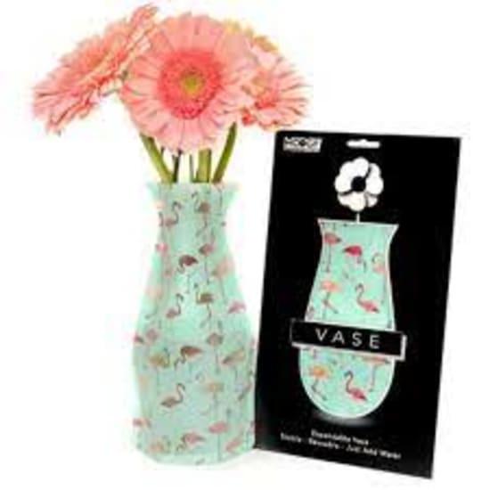 Modgy Pinkdo Vase - Standard