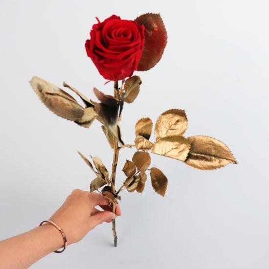 Preserved Red Rose Gold leaves - Standard