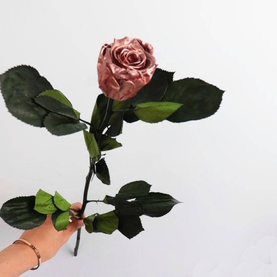 Preserved Rose Gold Rose - Standard