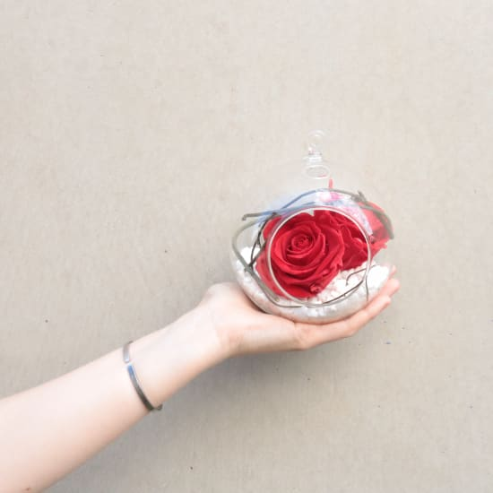 Preserved Red Rose Orb - Deluxe